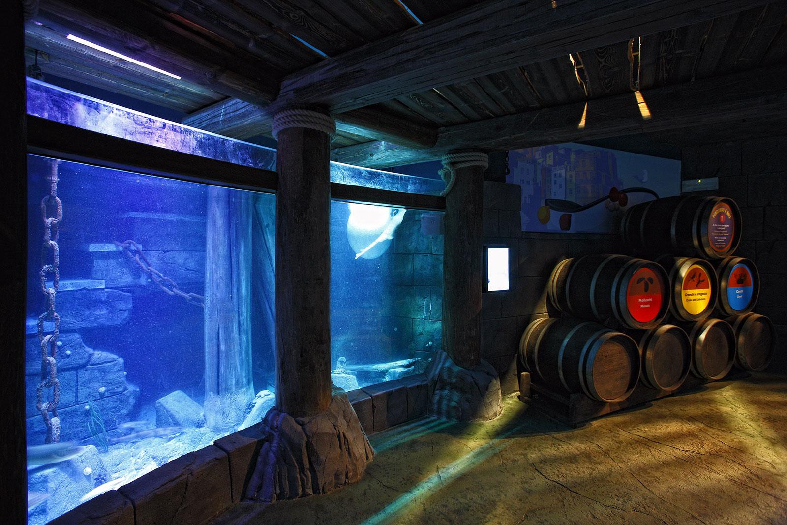 7--Sealife-Aquarium-Lido-di-Jesolo