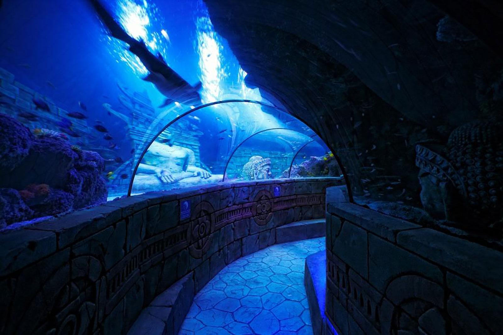8---oceanic-tunnel-Sealife-Jesolo-Lido