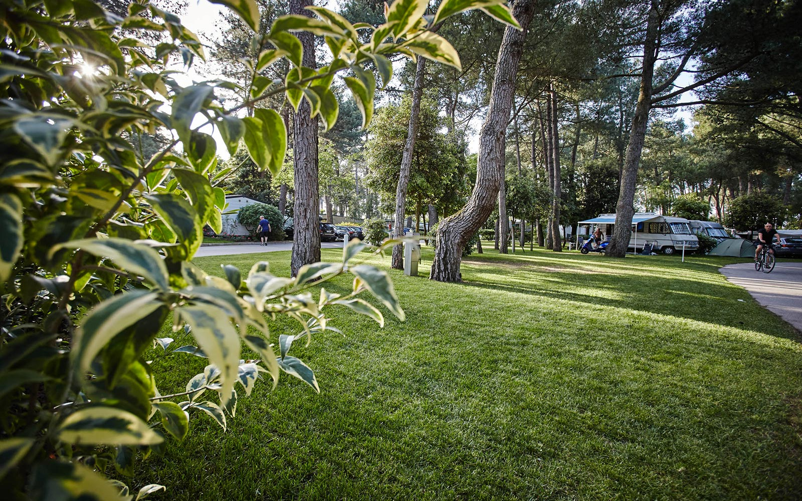 4-Campeggi in Veneto