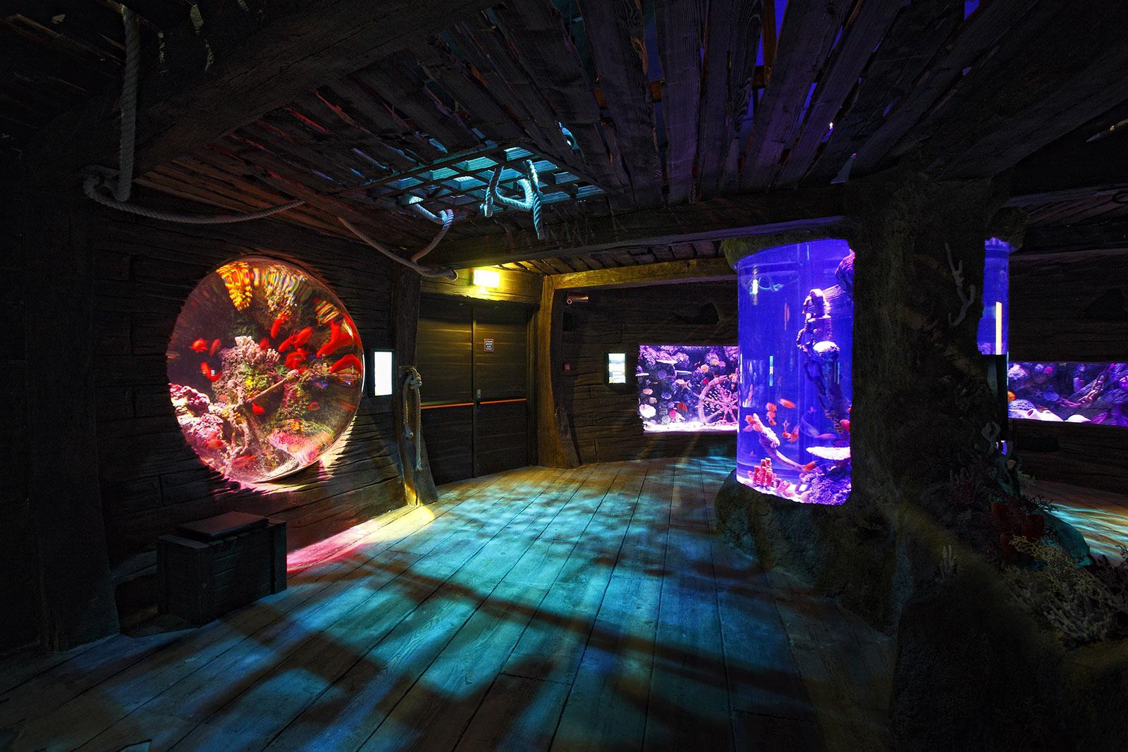 9---ozeanischen-Tunnel-Sealife-Jesolo-Lido