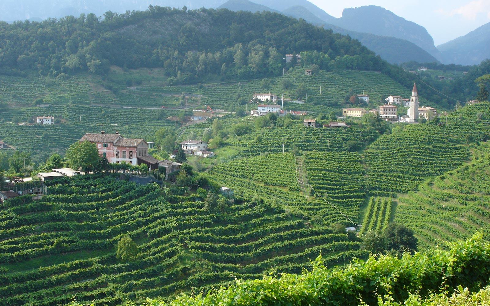 10 Prosecco Hills. Reisen wÑhrend eines Urlaubs in der Region Venetien